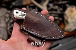 CFK Handmade VG10 Custom BEAR Scrimshaw New Zealand Red Stag Knife Mini Knife