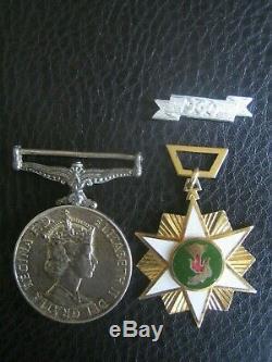 Vietnam War Medal Pair New Zealand Army
